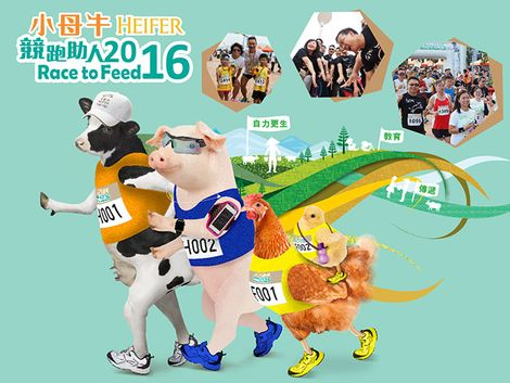 Heifer Race to Feed 2016